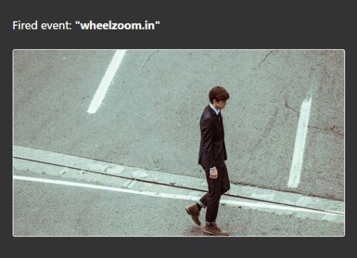 Canvas Based Image Zoom & Pan JS Library – Wheelzoom