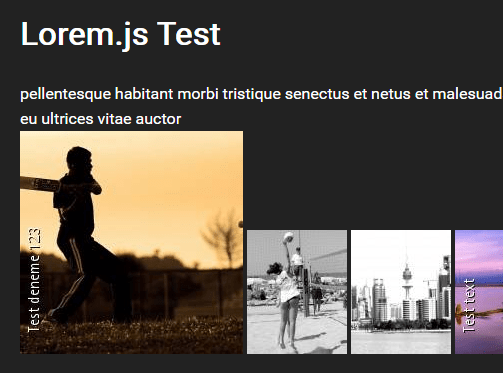 Lorem Text And Placeholder Image Generator In Pure JavaScript – Lorem.js