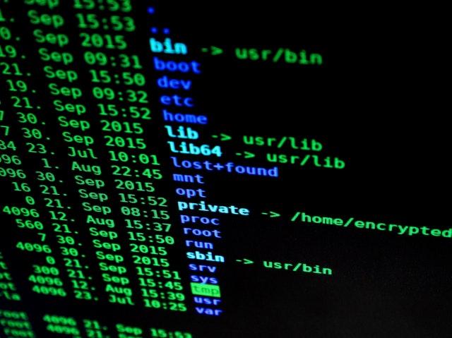 Flexible Text Typing Effect In Vanilla JavaScript – malarkey