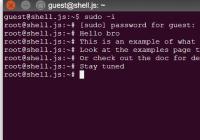 shell.js