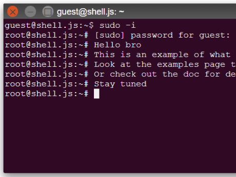 Create Custom Terminals With Pure JavaScript And CSS – shell.js