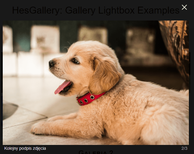 Mobile-compatible Responsive Gallery – HesGallery