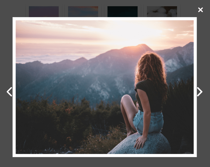 Responsive Photo Gallery & Lightbox – FG-Gallery