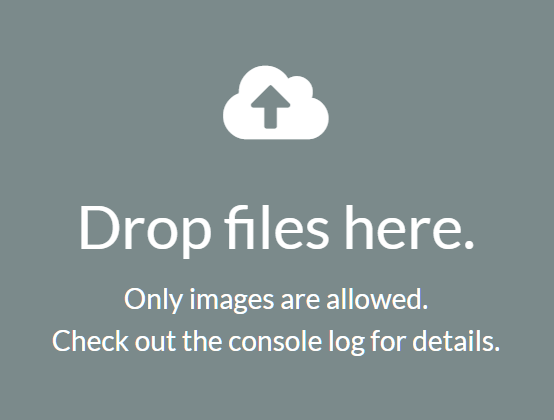 File Drop Zone For Uploader – DnD Zone