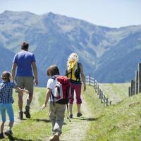 WWF: quattro semplici regole per affrontare un'escursione