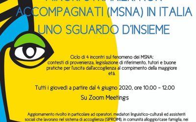 Minori stranieri non accompagnati in Italia: uno sguardo d'insieme