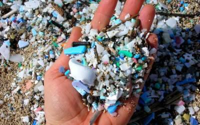 Rapporto di Greenpeace: plastica liquida nei detergenti per il bucato e le superfici, una nuova minaccia per il mare