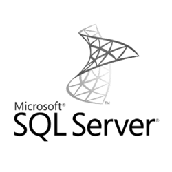 Dallas TX Microsoft SQL IT service experts.