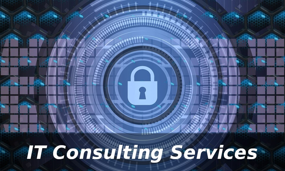 IT Consultant