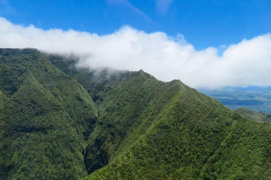 Groen Kauai