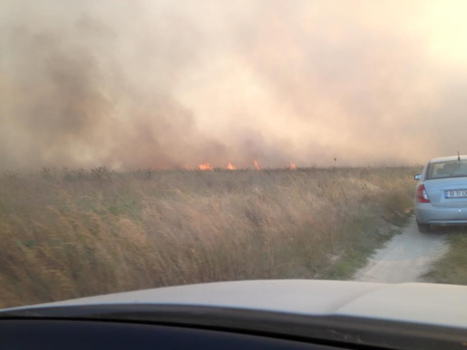 """Incendiu de proporții la Vadu. Cherhanaua """"Vadu pescarilor"""" a fost distrusă de flăcări"""