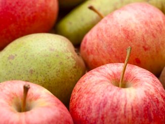 Fructe proaspete. FOTO treetop