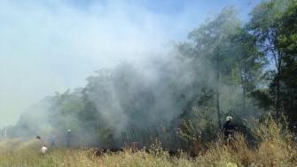 Incendiu de vegetație la Peștera