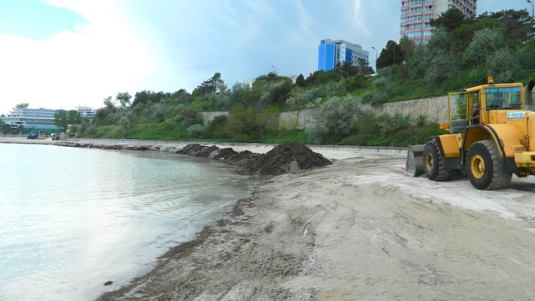 Tone de alge adunate de pe plaje