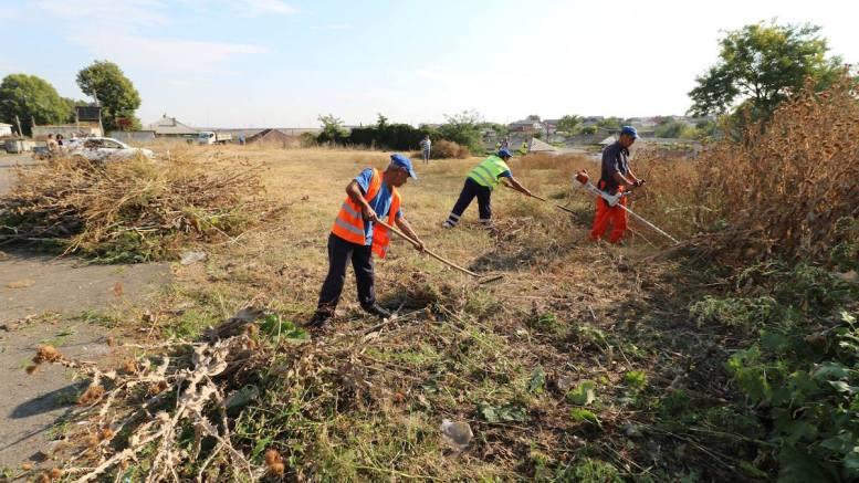 Curățenie la spații verzi. FOTO Arhivă