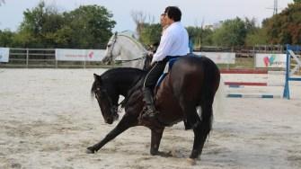 Calul a executat o plecăciune în fața oaspeților. FOTO Adrian Boioglu