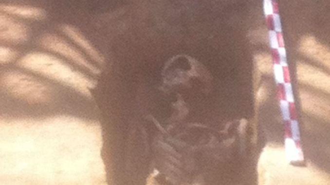 Mormânt din secolul IV la Constanța