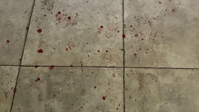 Comisari OPC atacati si stropiti cu sange la un control. foto OPC Constanta