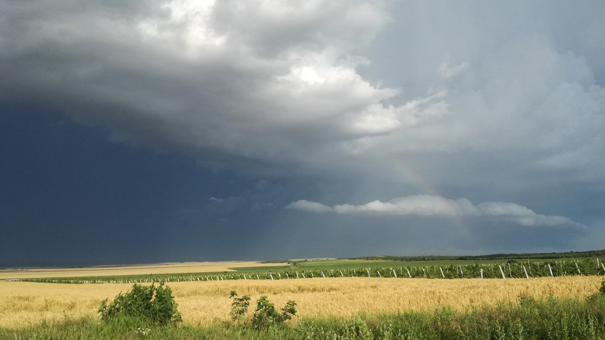 Nori de furtuna (1)
