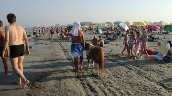 Poneiul confiscat de Politia Locală era folosit la același tip de activități și pe plajă. FOTO Catalin Schipor