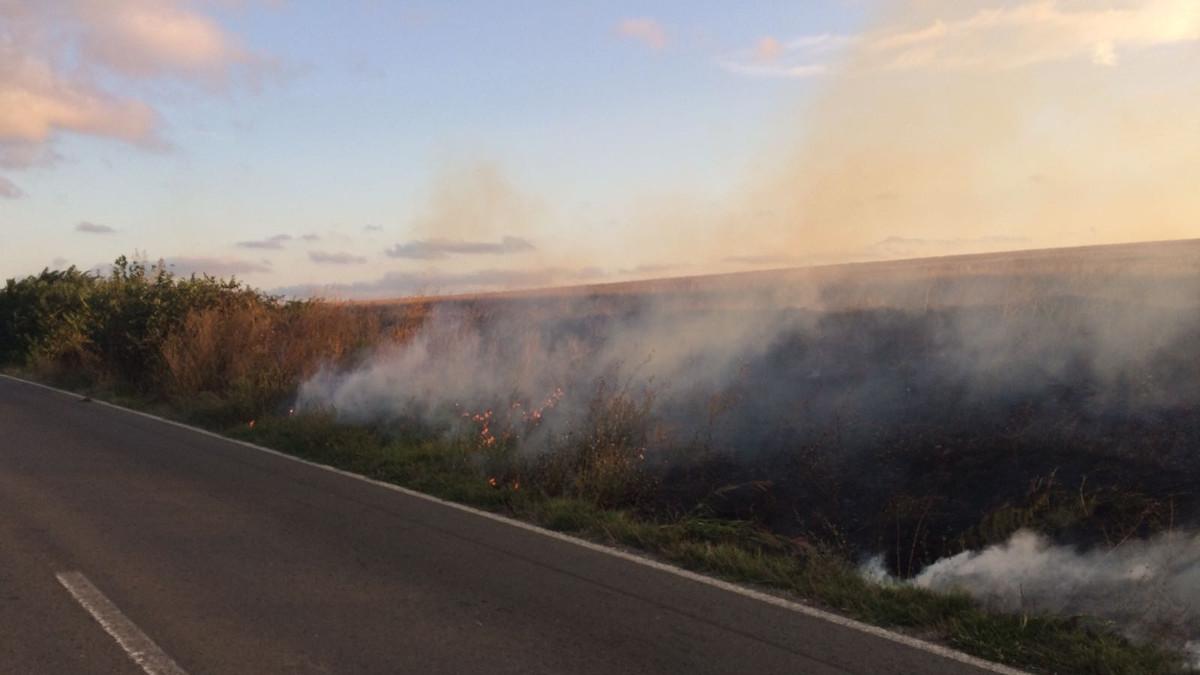 Incendiu vegetatie uscata (3)