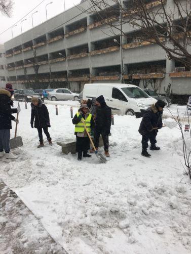Angajații Polaris au curățat zona Policlinicii de la Spitalul Județean. FOTO Primăria Constanța