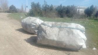 Alte două zone din oraș au fost igienizate de lucrătorii Polaris. FOTO DGPL Constanța