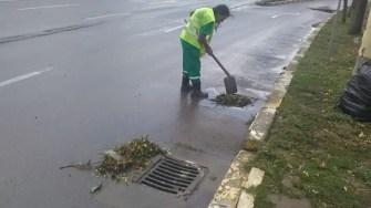 Angajații Polaris au intervenit după vijelie și au desfundat gurile de canalizare și curățat copacii căzuți. FOTO Polaris M Holding
