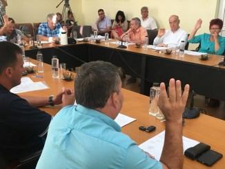 Ședință de Consiliu Local Medgidia. FOTO CTnews.ro