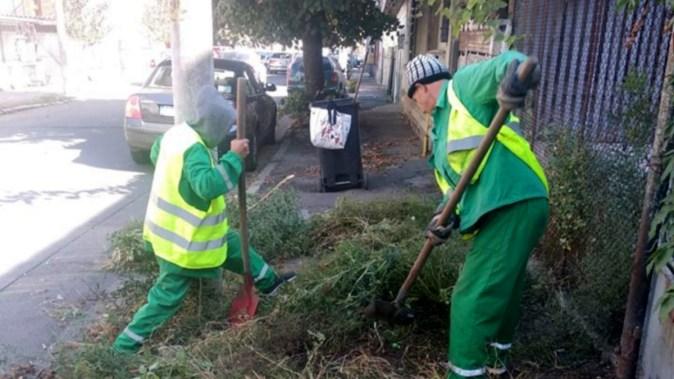 Echipele Polaris M Holding au continuat campania de curățenie. FOTO Polaris M Holding