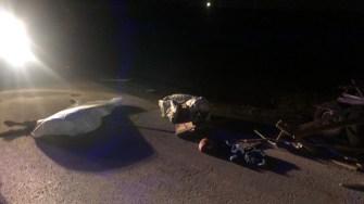 În urma accidentului, căruțașul a decedat. FOTO IPJ Constanța