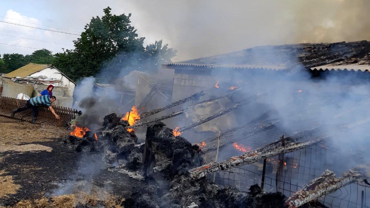 incendiu grajd (4)