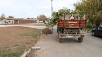 Primăria Hârșova amenajează spațiile verzi. FOTO Adrian Boioglu