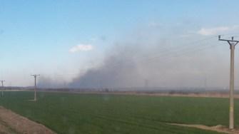 Incendiul de vegetație uscată a scăpat de sub control. FOTO ISU Dobrogea