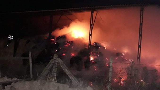 """Intervenție a pompierilor militari la Ferma 6 Valu lui Traian. FOTO ISU """"Dobrogea"""""""