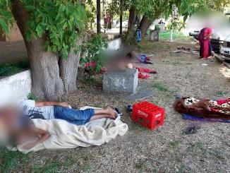 Civilizație cu amenzi usturătoare. FOTO Poliția Locală Constanța