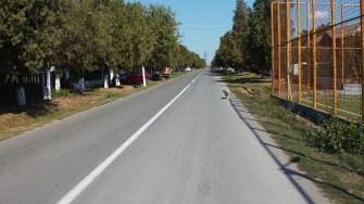 Asfaltări în comuna Seimeni. FOTO Paul Alexe
