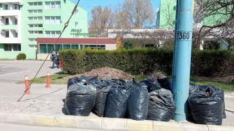 A început curățenia generală în Stațiunea Mamaia. FOTO Primăria Constanța
