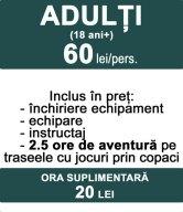 Adulti