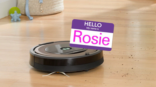 top 15 roomba names