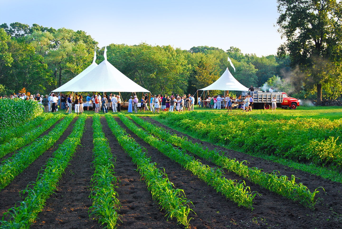 Farm To Table Dining In Ct