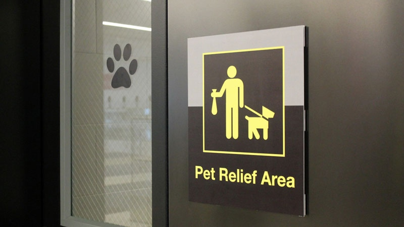 Dogs getting airport bathrooms of their own  Lifestyle