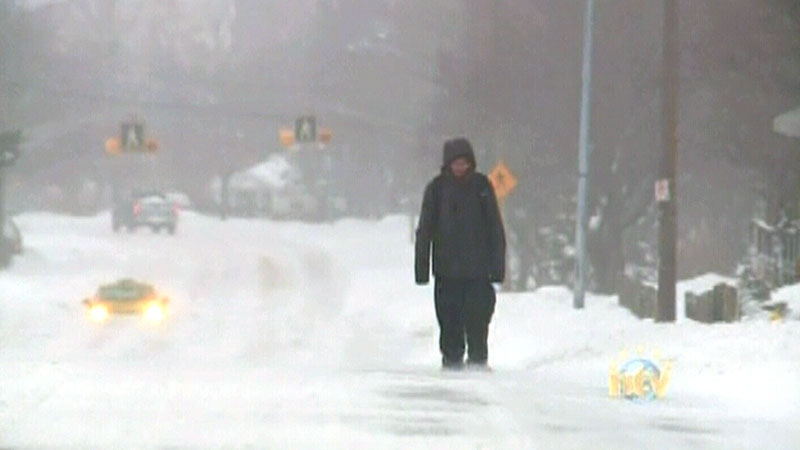 Newfoundland hit by spring storm thats dumping snow