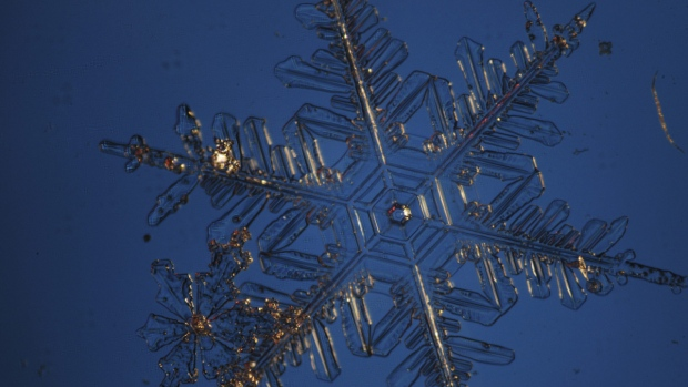 Snow Crystals Under Microscope
