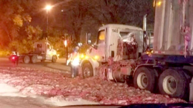 Residents fume after Sanimax spill sends animal entrails into road  CTV News Montreal