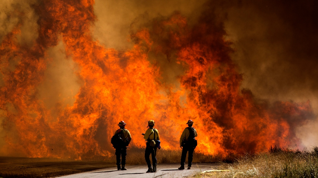 Apple Fire, Cherry Valley update: 20,516 acres scorched, 7,800 ordered to evacuate
