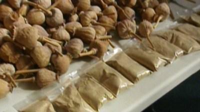 Use of 'doda' drug expected to grow | CTV News
