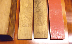 中臺山月刊180期-植物采風集-糖棕,扇椰子和貝多羅樹