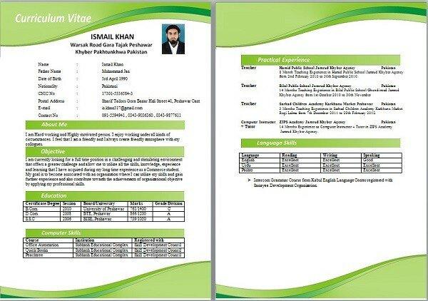 curriculum vitae documentado formato plataforma lattes