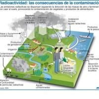 No escampa en Japón: Radioactividad, las consecuencias de la contaminación (+ Infografía)
